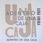 Amara, Luigi - Una caja adentro de una caja adentro de una caja pdf