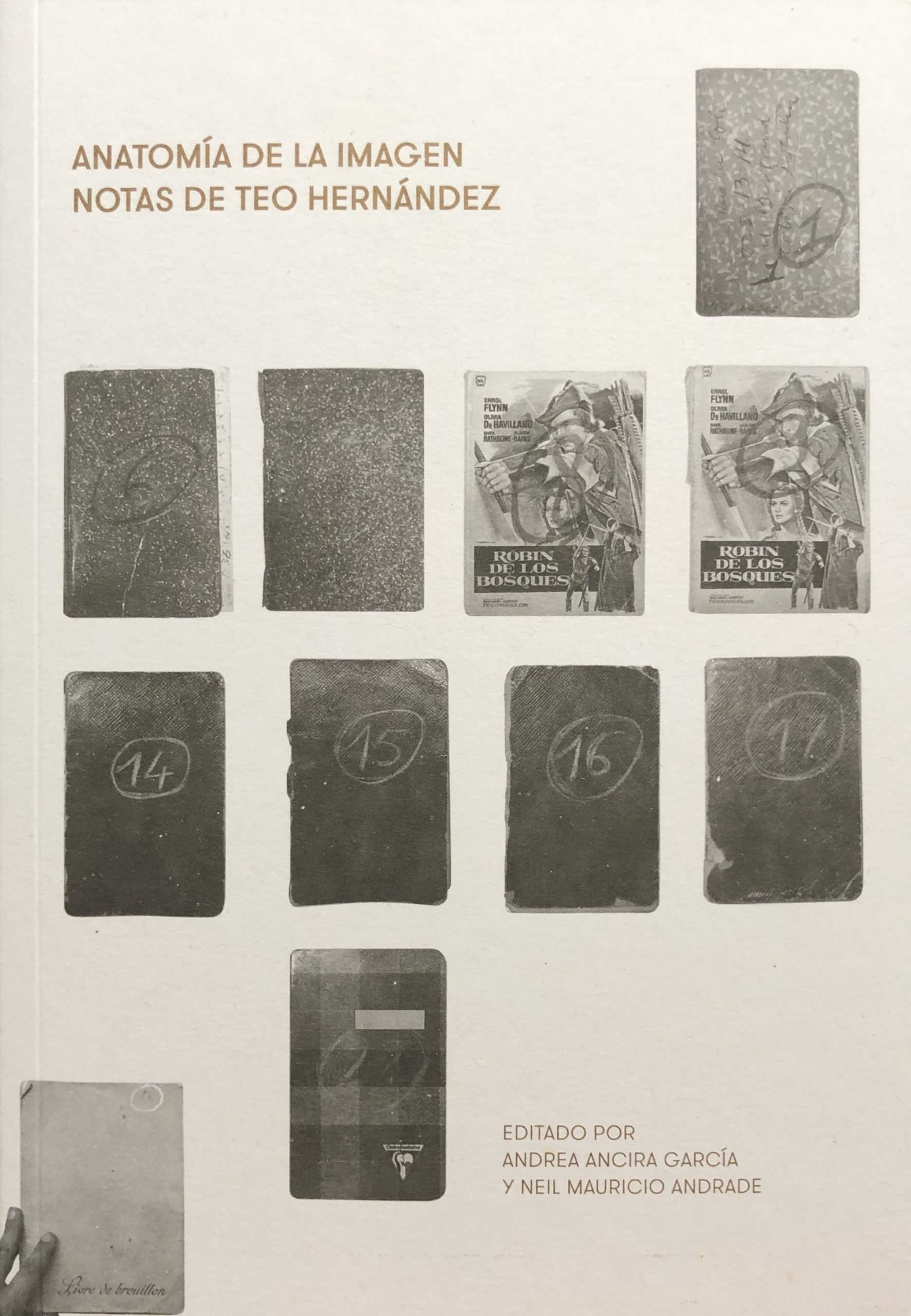 Anatomía de la imagen Notas de Teo Herrnández pdf